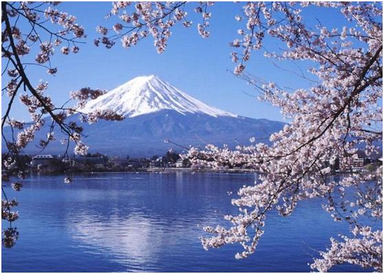 走近日本 本州双古都•双温泉•多处世界遗产7日奢华游