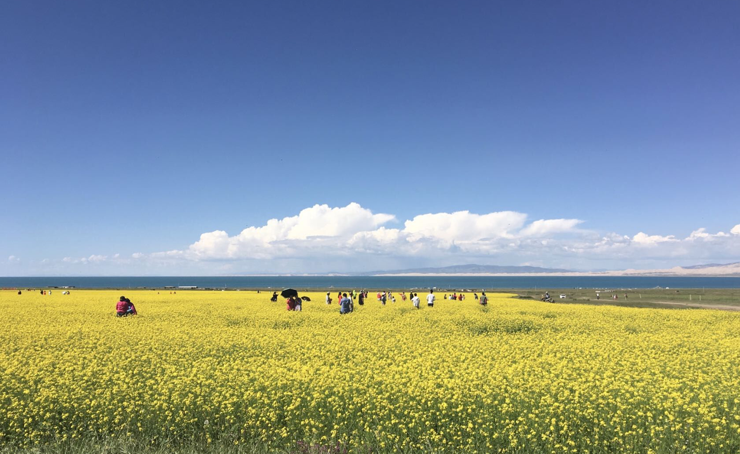 蓝宝石湖泊青海湖天空之境茶卡盐湖一日游