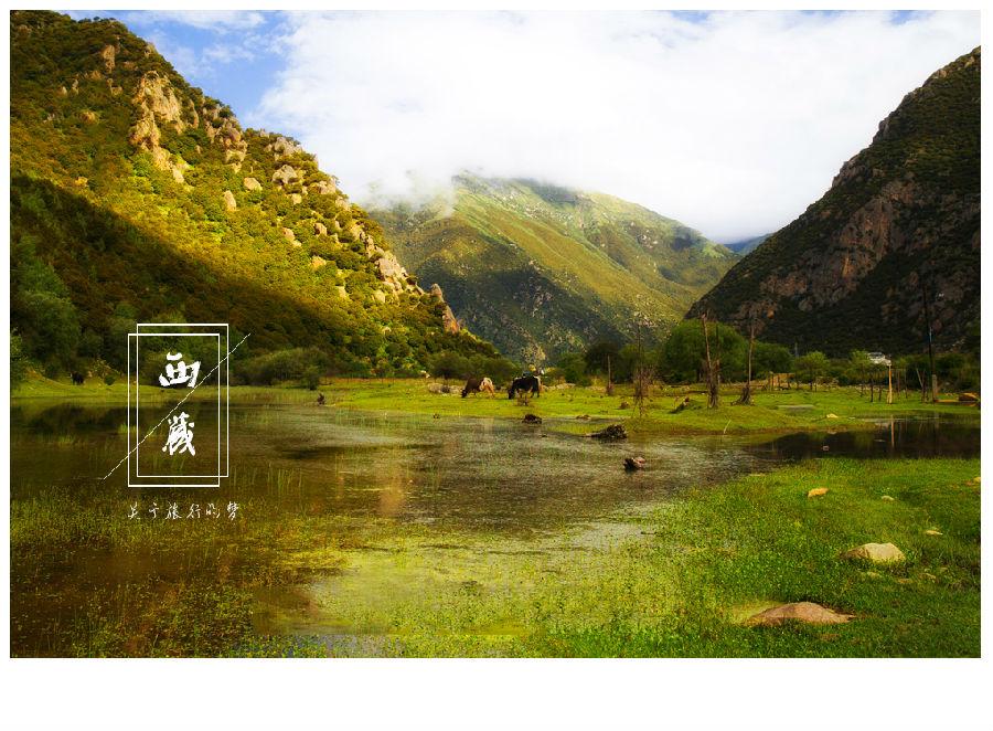 【西藏】最美的年华赏最美的景